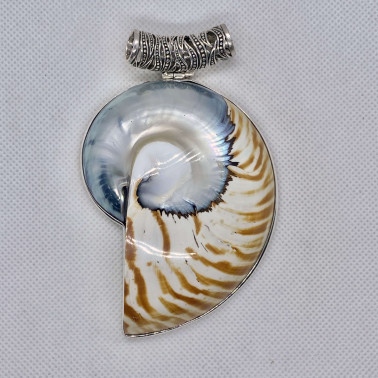 PD 14564 NT-(HANDMADE 925 BALI SILVER PENDANT WITH NAUTILUS TIGER SHELL)